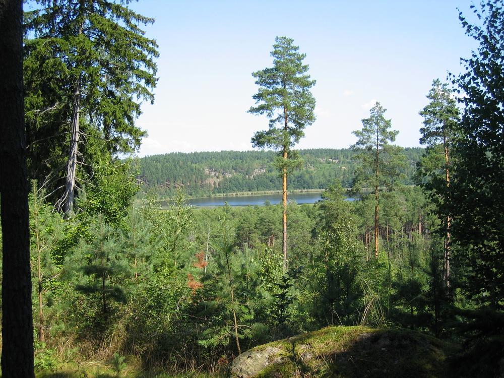 Paysage à Söderköping