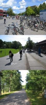 Vue du campus et de la route y menant