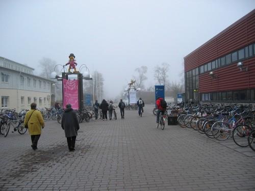 Brouillard sur l'université
