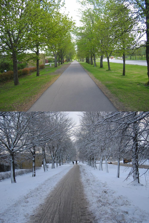 Chemin pédestre, au printemps et en hiver