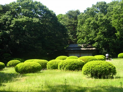 Tea house in a garden