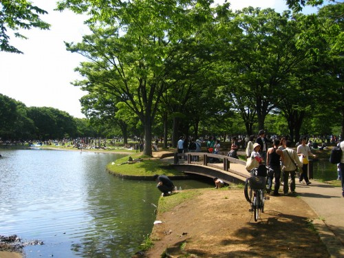 Sunday in Yoyogi Park