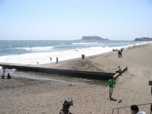Seaside beach, beware of the birds